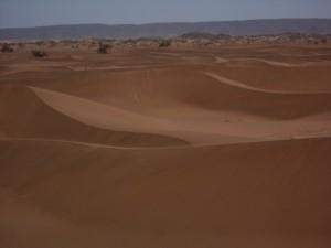 séjour sahara